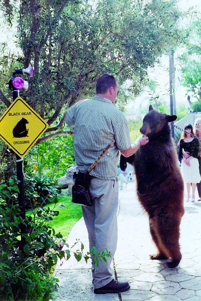 KIM RAMSAYER/The Acorn  A GOOD TIME TO BE CAREFUL-Scott Handley of Bear Necessities coaxes a male black bear down the driveway toward vendor booths at the recent Mercy Crusade Pet Extravaganza fundraiser. Guests could bid on silent auction items, and more than 100 businesses donated goods and services. The event was hosted at the North Ranch home of Alisa Barbarino, a Mercy Crusade board member, and it was a perfect venue for the elite affair. An estimated $50,000 was raised for the Spay and Neuter Clinic of Ventura County and the Tailwaggers Foundation.
