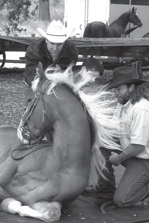 GENTLE GIANT—While  Moorpark  stuntmen  Richard Bucher, left,  and    Mark  Brooks demonstrate  training  techniques  on Thunder, a quarterhorse, a young Ride On student pets the animal during  the  recent  Ride  On fundraiser at Paramount Ranch.