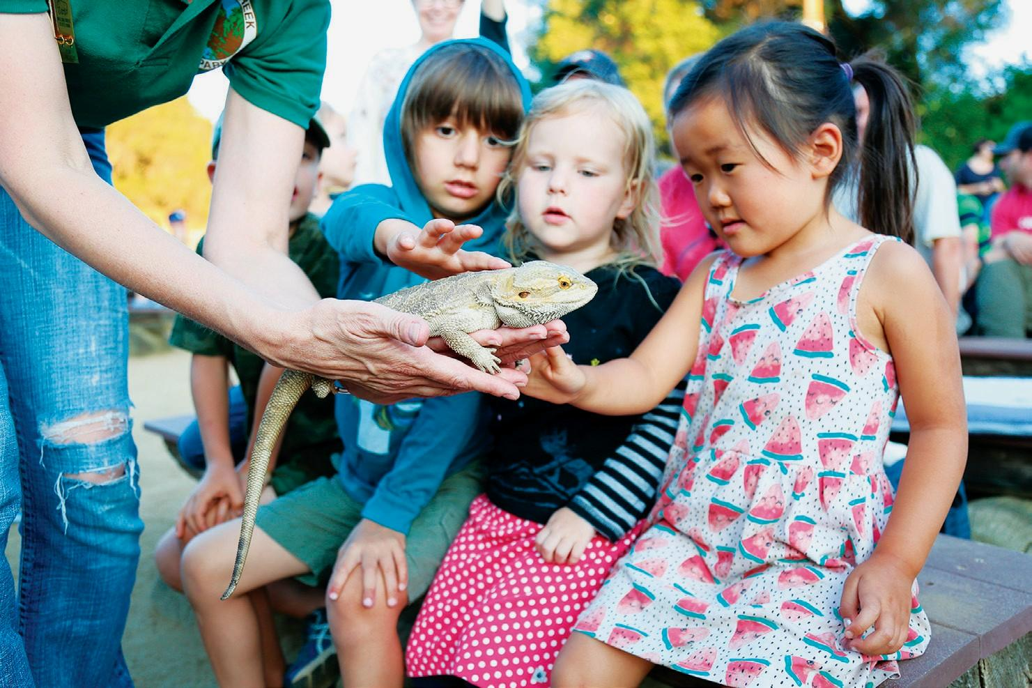 HANDS-ON—Above, Ben Barron, 5, his 3-year-old sister, Nora, and Jennifer Sun, 4, pet a bearded dragon. Left, J.P. Glynn, 8, of Agoura Hills enjoys wearing the frogs.