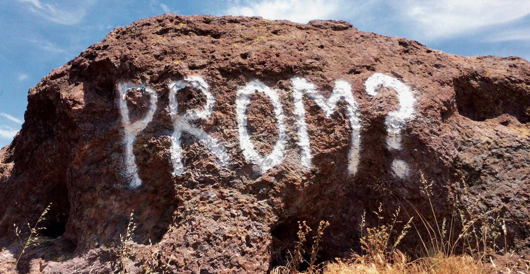 WHAT'S THE WORD—Park officials didn't find this graffiti at Sandstone Peak very amusing.